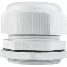 Сальник PG48